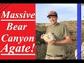 A Day in The Desert! Hunting for Bear Canyon Agates and Fossils! Part 1