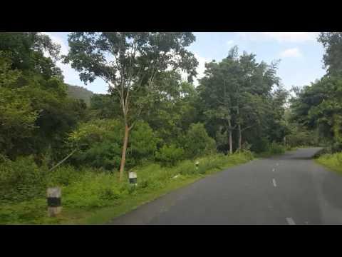 Drive towards Hasanur , Sathyamangalam Tiger Reserve | Talamalai R.F
