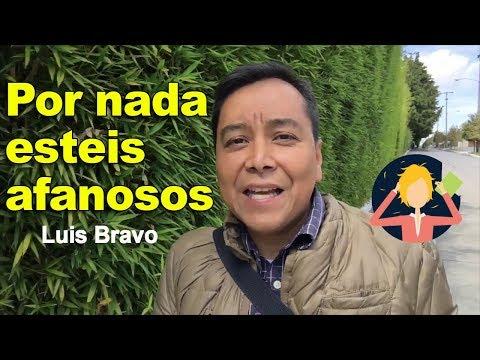 Por nada estéis afanosos - Luis Bravo