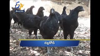 Telangana | 22nd April 2018 | Ghantaravam 12 Noon News Headlines