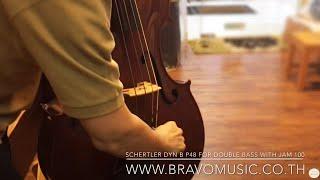 Dyn B P48 Bravo Music THAI