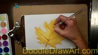 How to Paint a Realistic Fall Maple Leaf using Watercolors