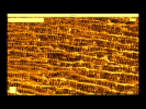 streaming Birkeland currents