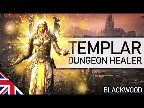 ESO   Templar Dungeon Healer Build (Blackwood)   English  