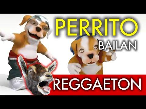 Factor X Xs Perrito Bailando y Cantando Regueton parte 2007