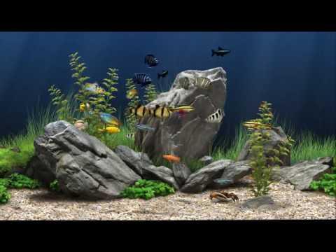 Dream Aquarium Screen Saver Virtual Aquarium Active Desktop