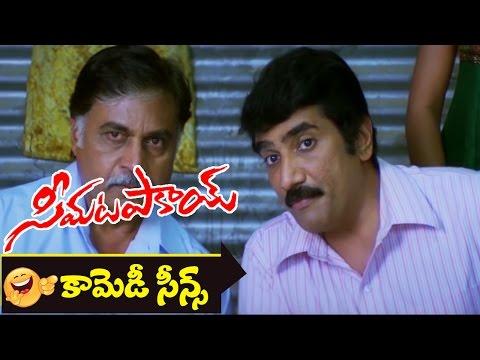 Sayaji Shinde, Rao Ramesh Comedy Scene || Seema Tapakai Movie || Allari Naresh, Poorna
