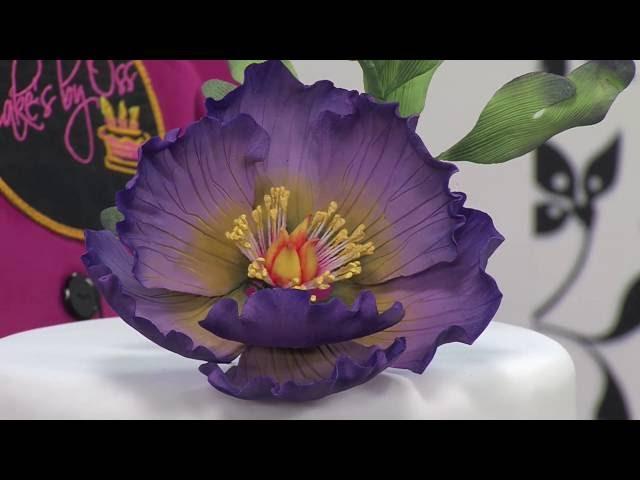 Sullivans Vanda Orchid Stem