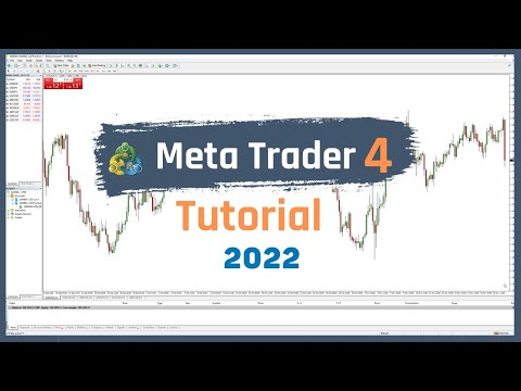 How To Use MetaTrader 4 (Tutorial For Beginners - How To Use A Charting Platform) [Trading Basics]