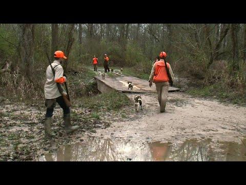 Yazoo County Rabbit Hunt