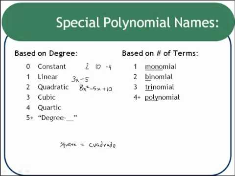Polynomial Vocabulary