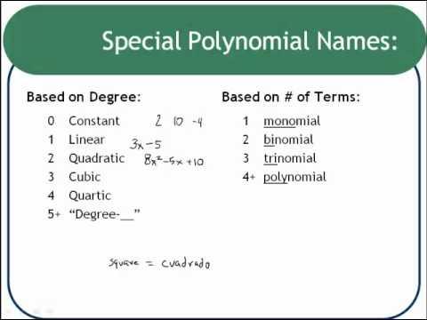 Polynomial Vocabulary