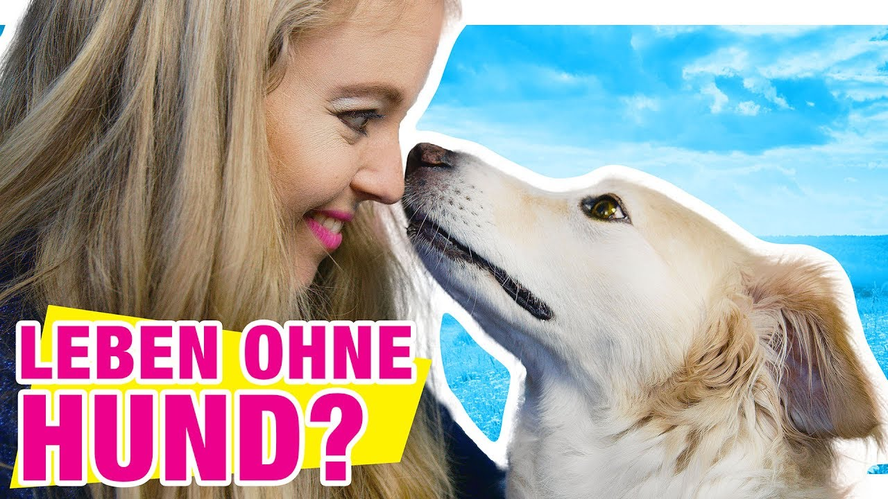 leben mit vs ohne hund youtube. Black Bedroom Furniture Sets. Home Design Ideas
