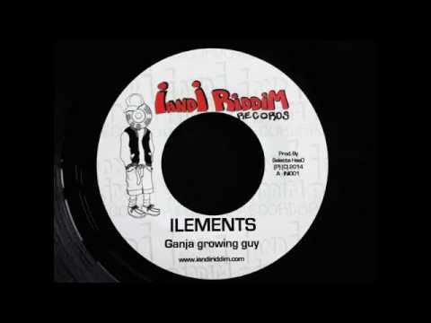 ILEMENTS - GANJA GROWING GUY (I and I...