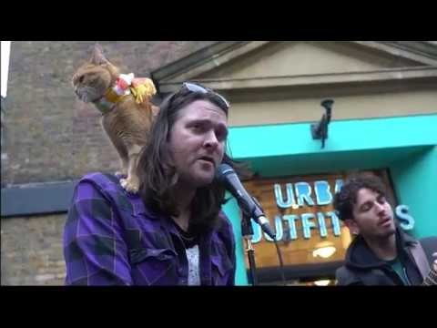 James and his strays perform Polly