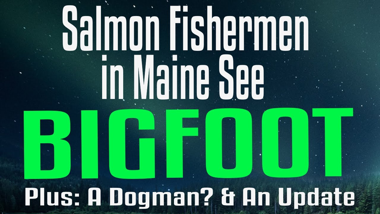 Salmon Fishers in Maine Have an Encounter - Plus Update from Last Week And Matthew has more to tell!