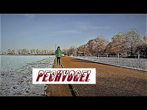 Pechvogel (Kurzfilm)