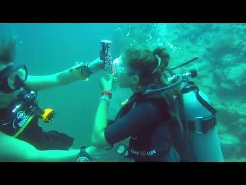 Marine Conservation Internship - Koh Tao, Thailand.