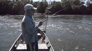 Peixes perdidos e video-cassetada no rio dos Peixes