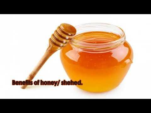 Benefits of honey | Madhu | Shehed |  शहद/मधु  के फायदे | Shehed ke fayde.