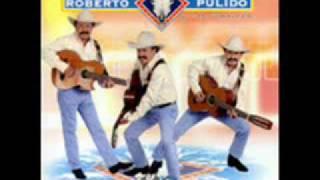 Roberto  Pulido    -    El  Timido
