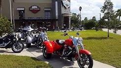 Adamec Harley Davidson Jacksonville/FL  (by Birkenwald)