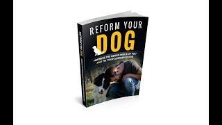 Reform Your Dog Program | German Shepherd