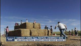 Harvest Farms Fall Festival