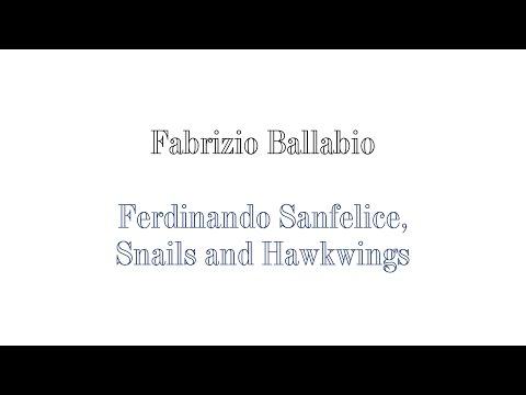 Fabrizio Ballabio - Ferdinando Sanfelice, Snails & Hawkwings.