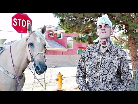 Cardi B - Bodak Yellow [OFFICIAL MUSIC VIDEO] - LiL MoCo REMIX ( Cholo Parody )