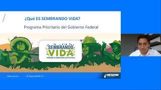 CURSO EN LÍNEA: Viveros Sembrando Vida - Con Isaí  Mendoza de Grupo INDERS
