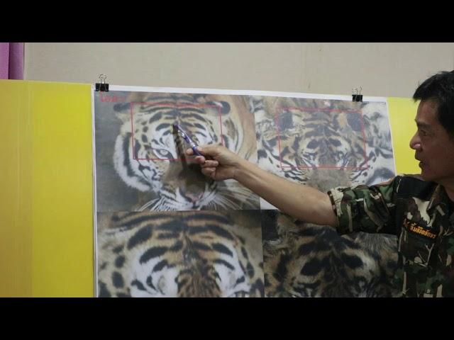 ตรวจสอบลายเสือ