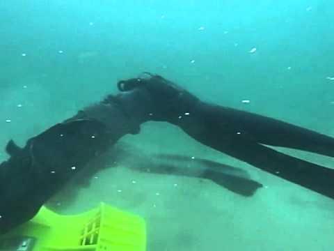 Download TUSA SAV 7_SEA SCOOTER WITH SCUBA LIFE MELBOURNE.m4v
