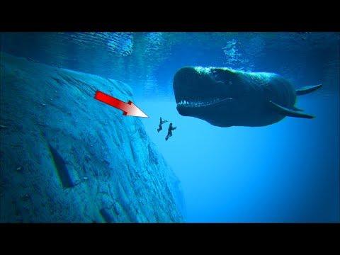 Ark Coop Map Crystal #13: Săn thuỷ quái khổng lồ ở đại dương