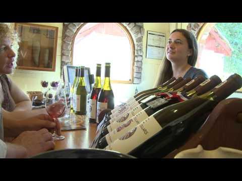 Tyee Winery, Near Corvallis, Oregon