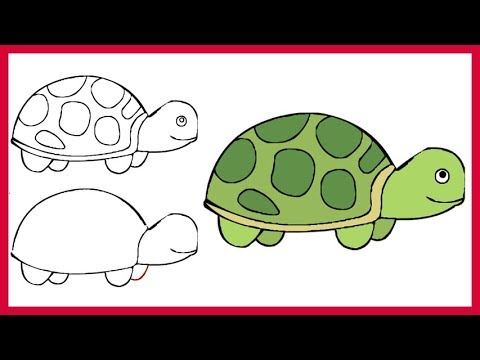 How to Draw a Turtle Easy Simple Step by Step for Kids and