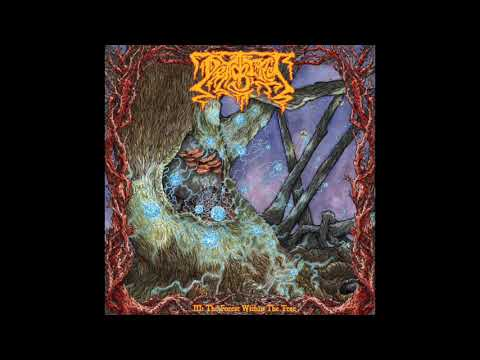 Deadbird-III: The Forest Within The Tree Review Mp3
