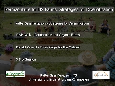 Permaculture for US Farms: Strategies for Diversification