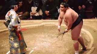 2017.02.05日本大相撲トーナメント第四十一回大会②⓪照ノ富士VS石浦(三回...