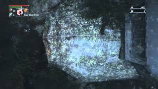 Bloodborne - Death Cam Glitch to Shadows of Yharnam