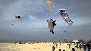Gambar cover Grand haven kite festival 2015