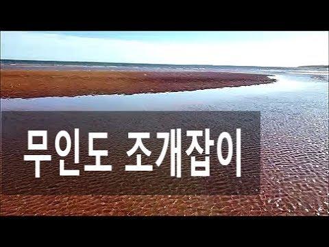 무인도 갯벌 조개 잡이 첫 번째 동영상