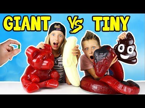 GIANT GUMMY vs TINY GUMMY!!!
