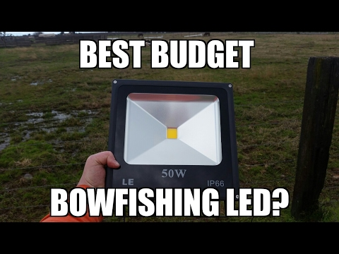 Budget Bowfishing LED Light? LE Warm White LED