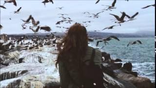 Max Cooper - Woven Ancestry • (Lusine Remix)[Fields]