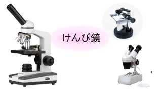 生物顕微鏡、解剖顕微鏡、双眼実体顕微鏡の使い方と特徴。 倉橋のメルマ...