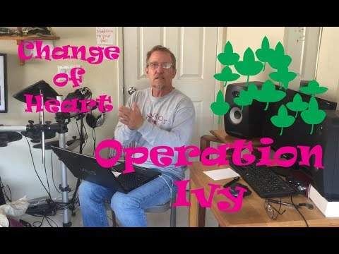 Operation Ivy Officer Reaction Change of Heart Stavros Mailbox