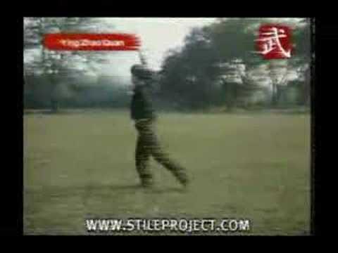 Kung Fu Eagle Style Eagle style Kung fu. -...