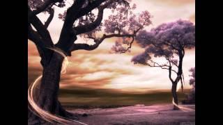 sander Van Doorn & Purple Haze - Bliksem