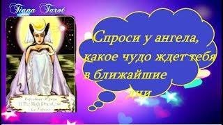 Спроси у Ангела какое чудо ждет тебя в ближайшее время! Гадание на картах Таро на любовь и не только